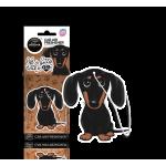 Animals - teckel