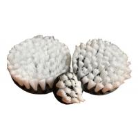 Carpet brush white soft set